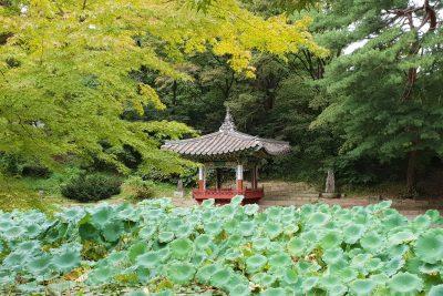Voyager en Corée du Sud : Top 10